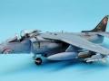 Harrier 001