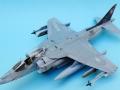 Harrier 002