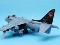 Harrier 004