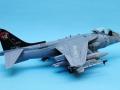 Harrier 005
