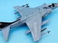 Harrier 006