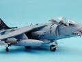 Harrier 008